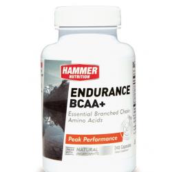 Endurance BCAA+